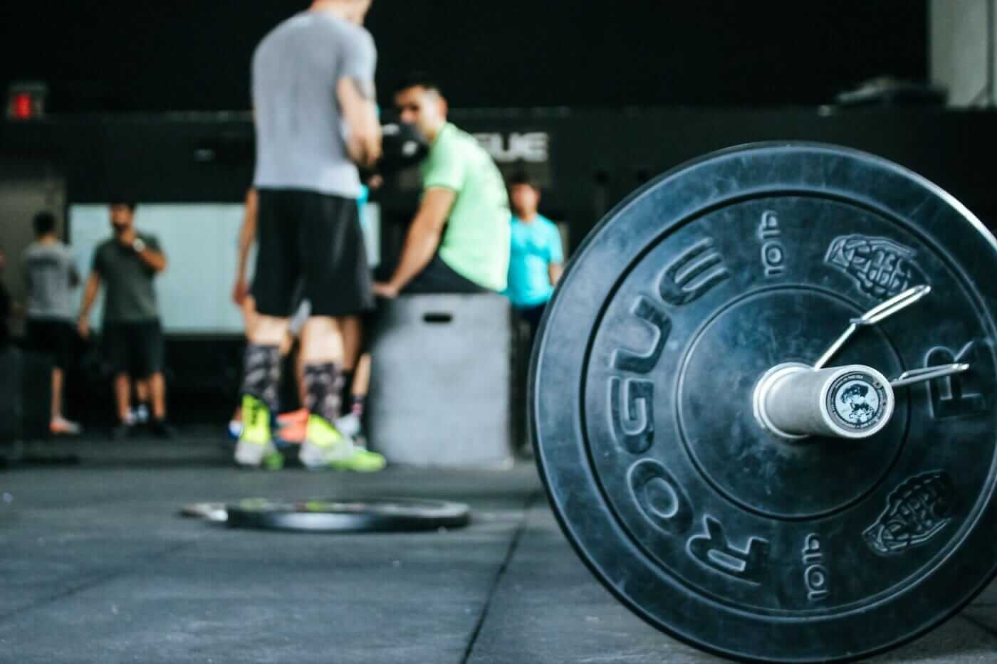 Increase Your Knowledge With A Powerlifting Certification